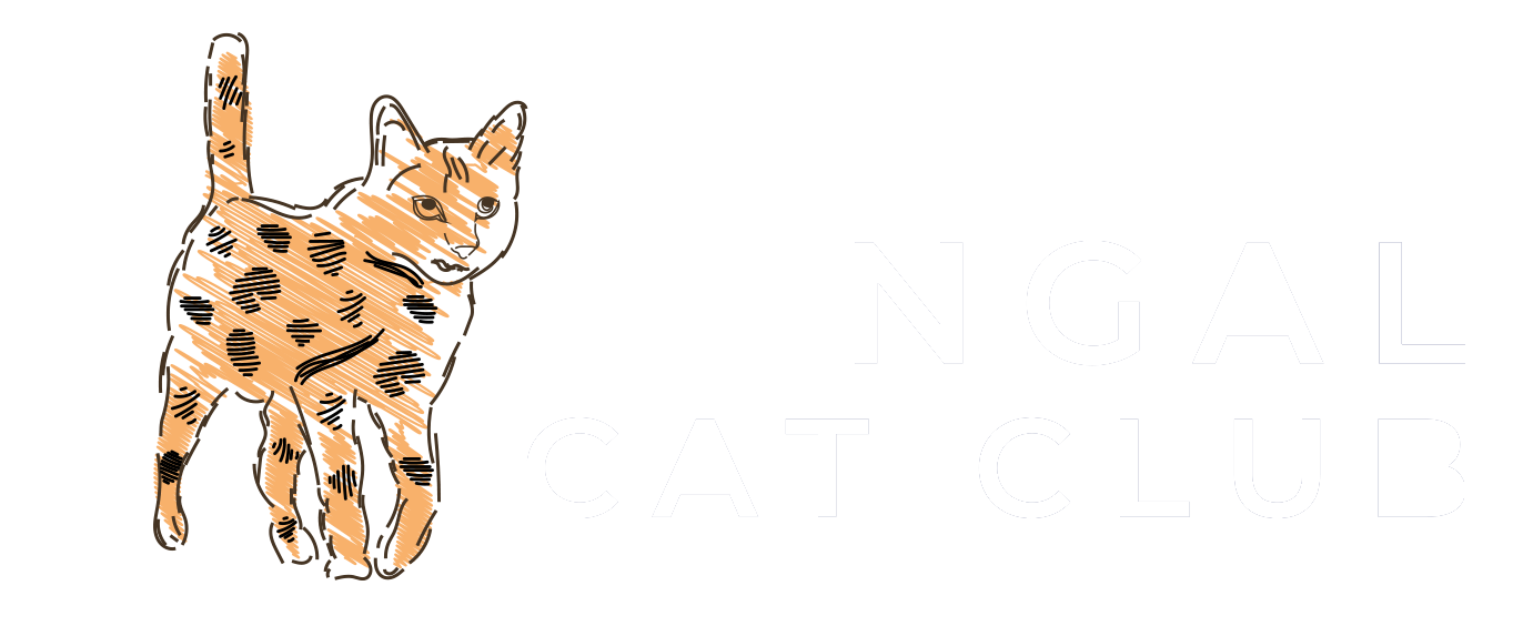 Bengal Cat Club
